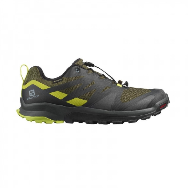 SALOMON XA ROGG GTX Olive Night/Peat/Lipu